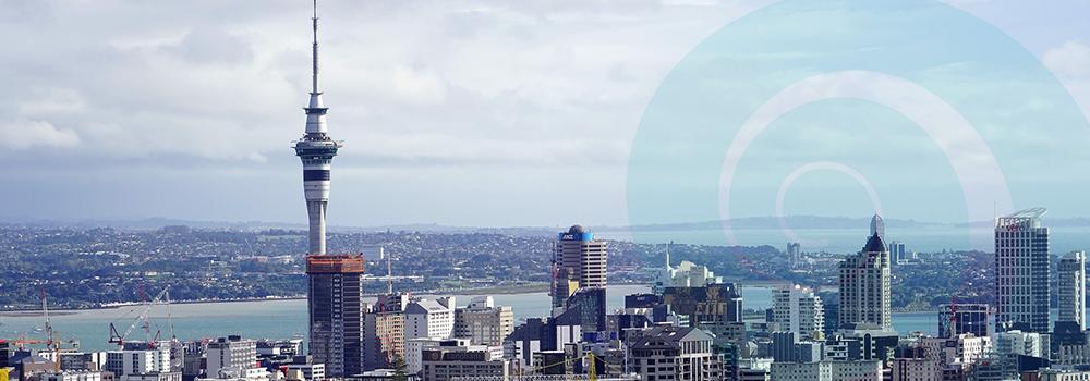 Auckland News